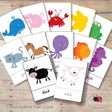 8 Best Images About Flash Card Ideas On Pinterest  Shape, Homemade And Dinosaurs