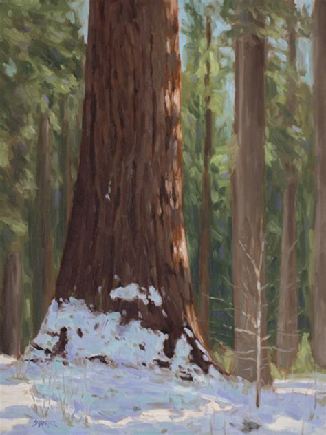 redwoods inspired art save  redwoods league