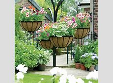 Hanging Flower Baskets The Only Guide You'll Need