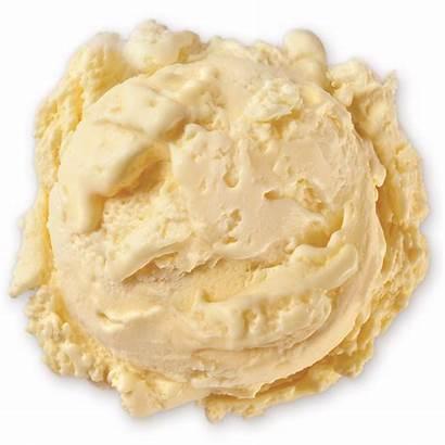 Vanilla French Cream Ice Scoop Homemade Vanillas