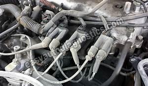 1997-2004 3 0l V6 Firing Order
