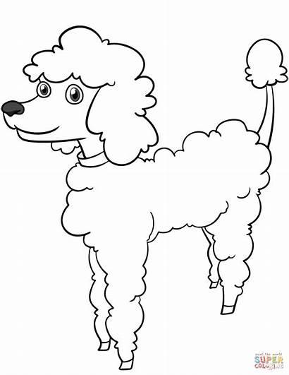 Poodle Coloring Dog Colorear Cartoon Dibujos Dibujo