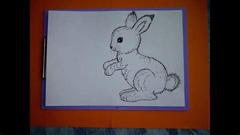 zeichnen lernen fuer anfaenger wie malt man einen hasen