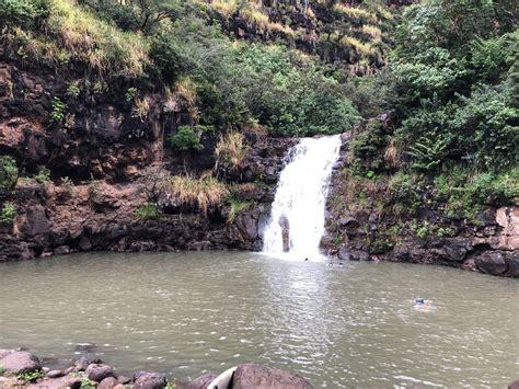 6 Mesmerizing Waterfalls Hikes In Oahu Flavorverse