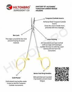 Anatomy Of A Needle