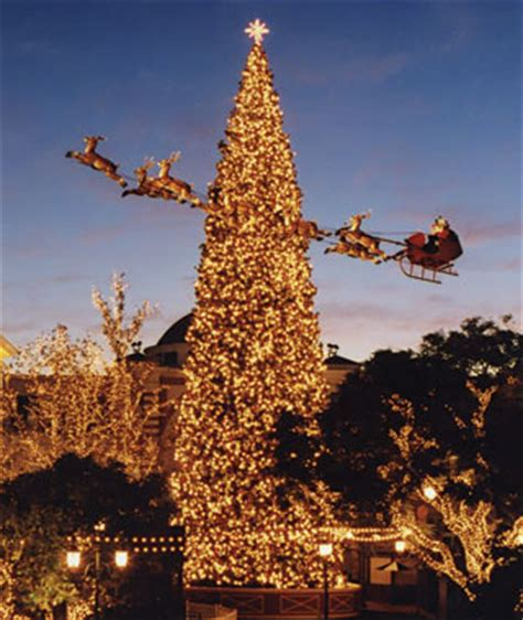 america s tallest christmas trees articles travel