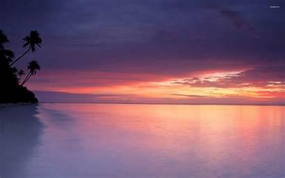 Sunset Purple Beach Sandy Beaches Sand Sky
