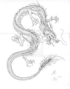Water Dragon outline by ~artstain on deviantART   Tattoos