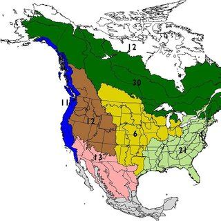 Avifaunal Biomes Of North America Numbers In Bold Indicate The Number  Download Scientific
