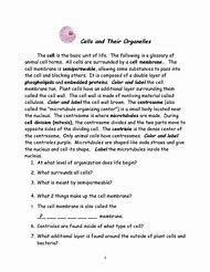 Best 25+ ideas about Cell Organelles Worksheet | Find what you'll love