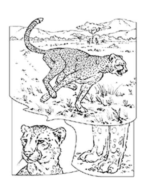 national geographic coloring pages   future