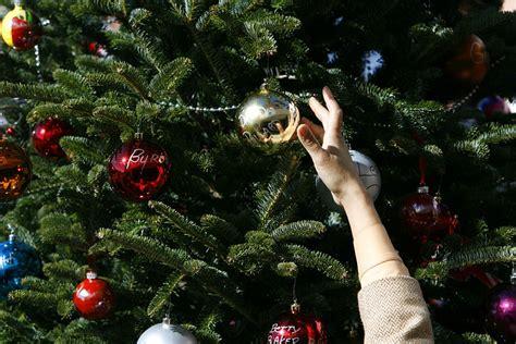 28 best houston garden center christmas trees frosty s