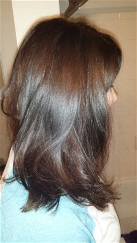 warm  cool chocolate brunette schwarzkopf igora royal