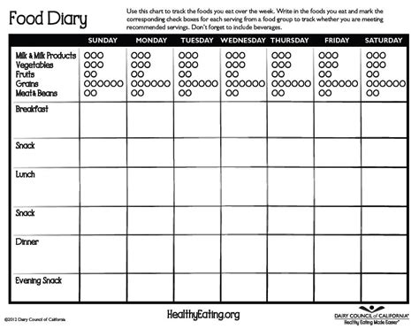 food diaries templates 5 free food journal templates excel pdf formats
