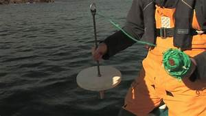 Secchi Disk Demonstration