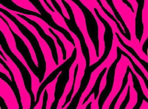 Pink And Black Animal Print Wallpaper - light pink zebra print background