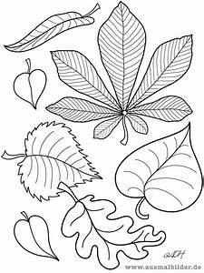 Blätter Vorlagen Zum Ausschneiden : ausmalbilder bl tter papierarbeiten pinterest ~ Lizthompson.info Haus und Dekorationen