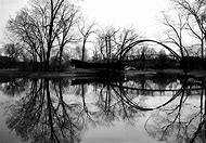 Beautiful Black and White Photography Nature