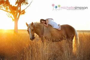Borris is my beautiful palomino Quarter Horse. Borris has ...