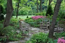 Garden Design For A Shade Garden Shady Garden Ideas Plants Plans Garden Design Ideas Garden Ideas Designs Small Garden Design Ideas For Compact Homes Copyright 2010 Summerdale Garden Designs
