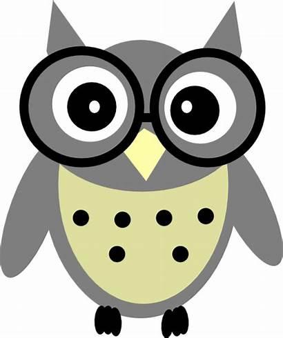 Owl Grey Clip Clock Clipart Clker