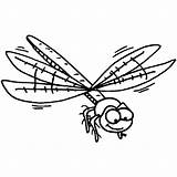 Dragonfly Coloring Libellule Printable Animaux Coloriage Template Coloriages sketch template
