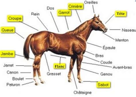 petit materiel de cuisine solutions 94 d 39 un cheval