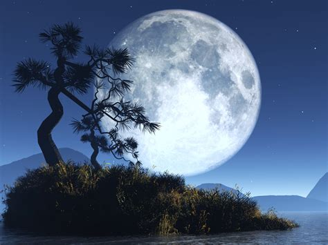 Full Moon And Her Phases, A Wondrous Natural Sight