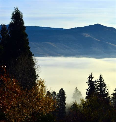 Fog Season Has Arrived « Ashland Daily Photo
