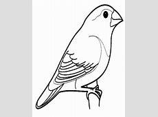 Gambar Rumah Burung Kartun image gallery burung kartun