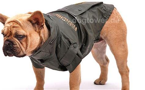 hunde regenjacke baleren