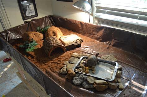 aquarium pour tortue terrestre accessoire tortue terre