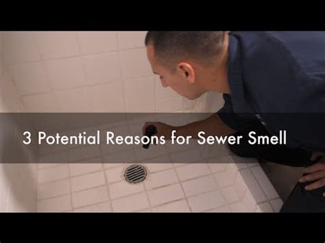 sewer smell   bathroom  potential