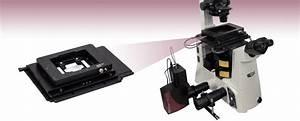 Xyz Microscope Stages