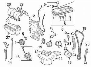 Pontiac Vibe Engine Timing Chain  Engine Timing Chain