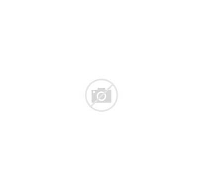 Hazard Symbols Warning Icon Labels Isolate Vecteezy