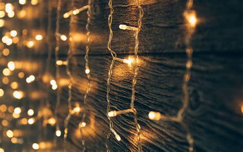 best outdoor christmas lights for your garden david domoney
