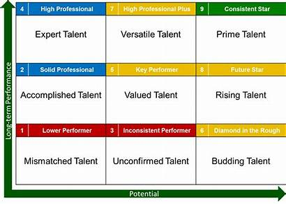Succession Planning Definition Matrix Examples Talent Cell
