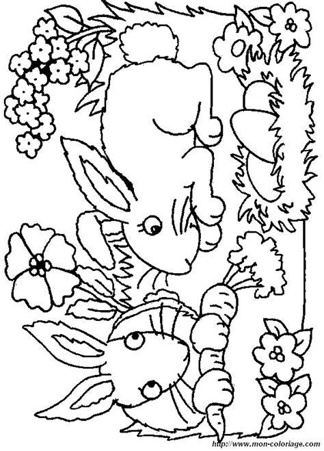 ausmalbilder kaninchen bild kaninchen