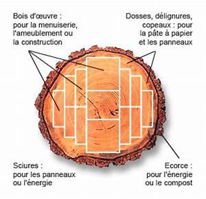 Pate A Bois Comment L Utiliser : papier bois et for t ~ Dailycaller-alerts.com Idées de Décoration