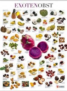 geschenke für köche exoten obst neu poster 65 x 90 cm