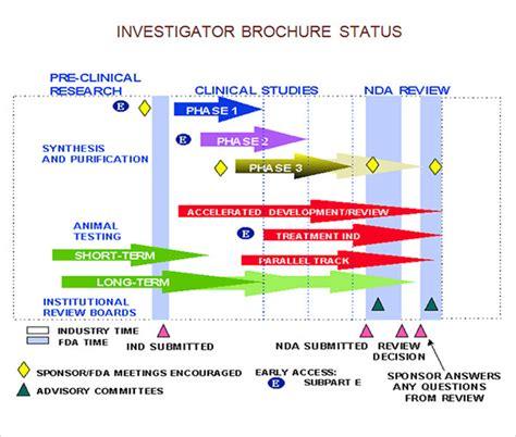 Investigator Brochure Template by 8 Investigator Brochures Sle Templates