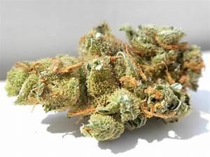 Online Drogen Shop : orange bud drogen direkt online kaufen drogen online der marktplatz f r ~ Orissabook.com Haus und Dekorationen