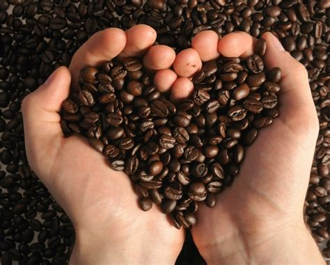 Sweets for Your Sweetie: DIY Chocolate Coffee Beans