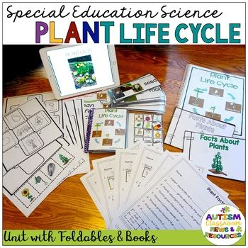 autism  special education science plant life cycle unit