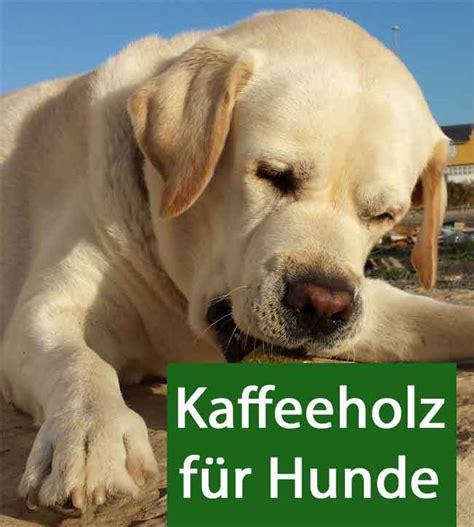 kaffeeholz fuer hunde
