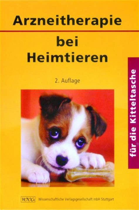 epileptische anfaelle bei hunden