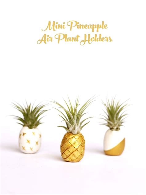 pineapple obsession for your 120 best images about pineapple obsession on