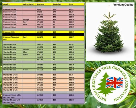 cheapest christmas trees near me deliver me a tree t 01732 522471 bctga members wholesale trade trees