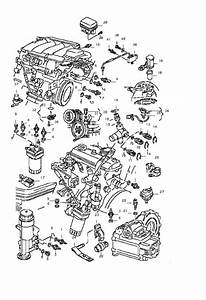 2000 Vw Beetle Engine Fan Diagram